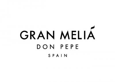 Gran Melia Don Pepe